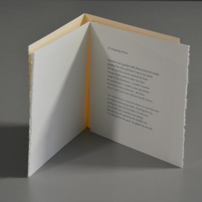 Coqui, Coqui: Poems