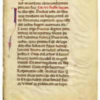 E0003 Leaf from a Lectionary (Lectionarium)